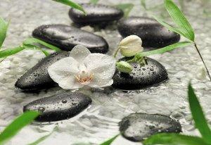 Фотообои Чистота - белые орхидеи среди камней