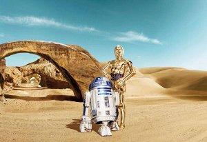 Фотообои ЗВЕЗДНЫЕ ВОЙНЫ Потерянный дроид