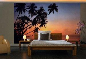 Фотообои Закат в тропиках