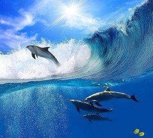Фотообои Дельфины в волнах