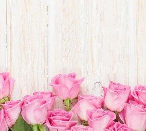 Фотообои Бутоны роз