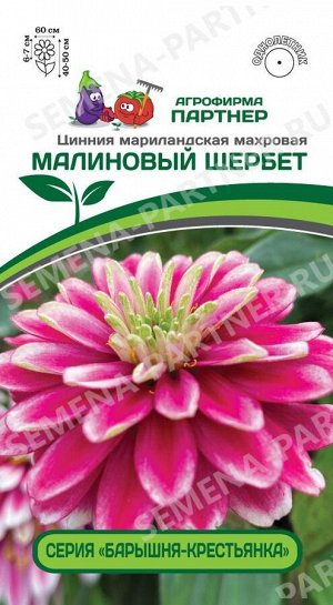 Семена ЦИННИЯ МАЛИНОВЫЙ ЩЕРБЕТ ^(5ШТ) 2-НОЙ ПАК
