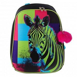 Рюкзак каркасный Hatber Ergonomic 37 х 29 х 17 см, для девочки, «Зебра»