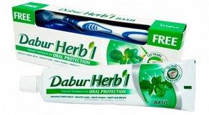 DABUR HERB'L Toothpaste BASIL/ Зубная паста с базиликом + зубная щётка ср. Жесткости 150г.