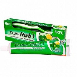 Паста зубная (гель) DABUR HERB'L Fresh Gel MINT & LEMON (Освежающая) with Toothbrush   + зубная щётка ср. жесткости, 150 гр.