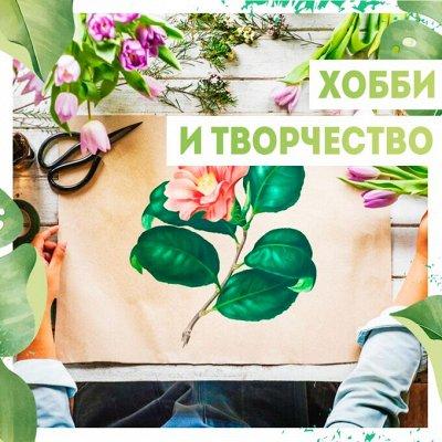 Нужная покупка👍 Открываем сезон посева — Хобби/ творчество🧑