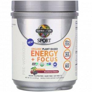 Garden of Life, Sport, Organic Plant-Based Energy + Focus, Pre-Workout, Blackberry Cherry, 8.1 oz (231 g)
