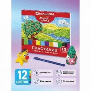 """Пластилин классический BRAUBERG """"МАГИЯ ЦВЕТА"""", 12 цветов, 240 г, со стеком, высшее качество, картонная упаковка, 103357"""