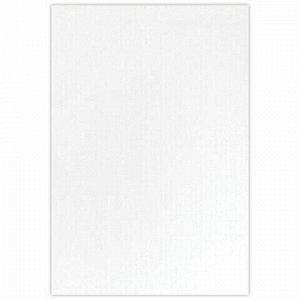 Холст на подрамнике акварельный BRAUBERG ART CLASSIC,20х30, 240г/м, 100% хлопок,мелкое зерно, 191667
