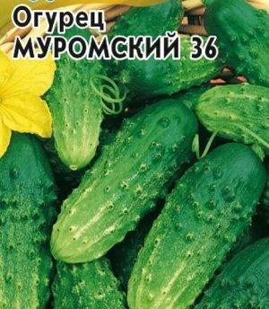 Муромский 36 10шт НОВИНКА СО огурец