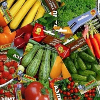 Семена: Цветы Овощи Цены от 6 руб — ❤ Семена грибы, бобовые, овощи — Мицелии грибов