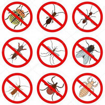 Большой Антенновский пристрой — Средства защиты от насекомых и грызунов — Удобрения и агрохимия