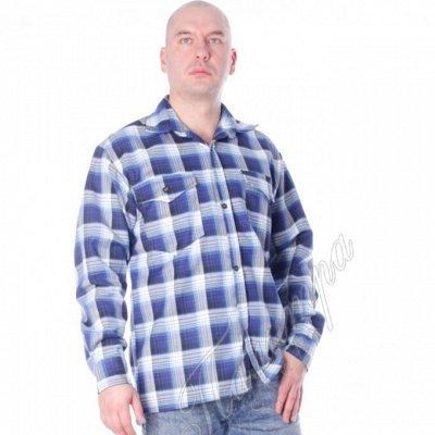 ✅Пристрой - Одежда / Товары для дома / Косметика — Для мужчин — Одежда