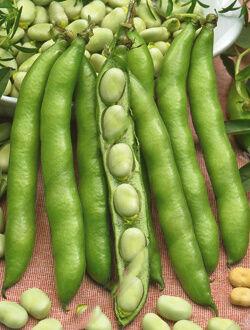 Белая гвардия овощные 10шт А бобы