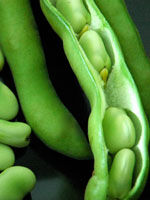 Черная жемчужина овощные  А бобы