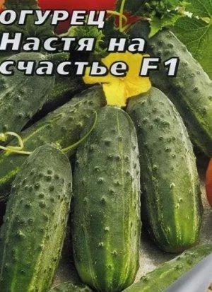 Настя-на-Счастье F1 Парт 10шт корнишон автор Г огурец