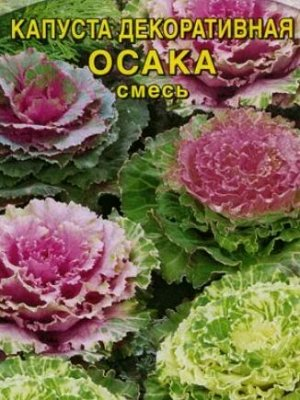 Капуста декоративная Осака смесь F1 7шт Плазмас