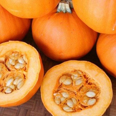 Распродажа луковичных и семян! Количество ограничено! — Тыква — Семена ягод