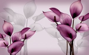 3D Фотообои  «Фиолетовые каллы»