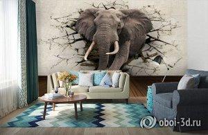 3D Фотообои  «Слон сквозь стену»