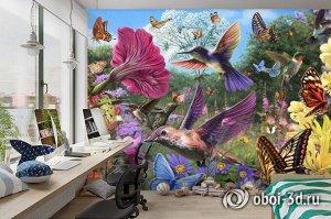 3D Фотообои «Колибри»