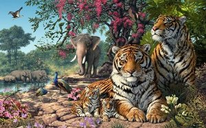 3D Фотообои «Тигриное царство»