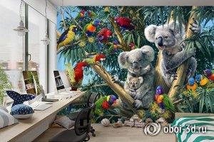 3D Фотообои «Тропический коалы»