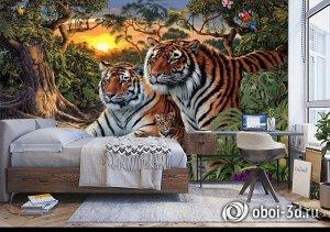 3D Фотообои «Тигриная семья. Закат»