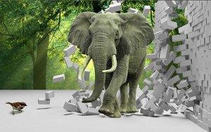 3D Фотообои «Слон на фоне леса»