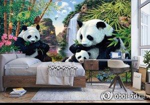 3D Фотообои «Семейство панд»