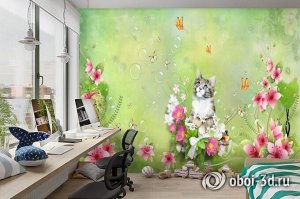 3D Фотообои «Кошачьи мечты»