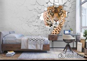 3D Фотообои  «Притаившийся леопард»