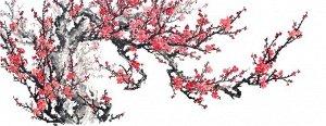 3D Фотообои  «Япония: Сакура»