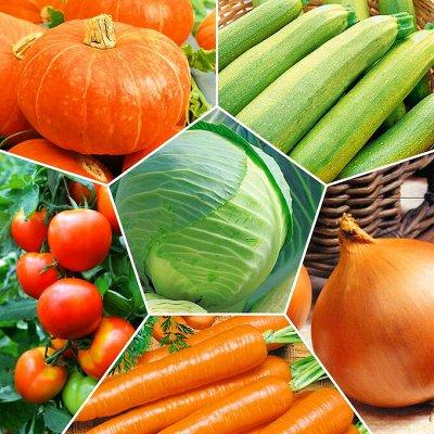 😱Мега Распродажа !Товары для дома 😱Экспресс-раздача! 57⚡🚀 — Семена овощей и пряных трав — Семена овощей