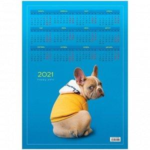 "Календарь настенный листовой А3, ""French bulldog"", 2021г."