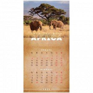 """Календарь настенный перекидной на скрепке, 20*20 6 л. """"Africa"""", 2021г."""