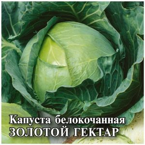 Семена Капуста белокочанная «Золотой гектар»