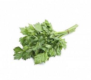 Семена Сельдерей листовой «Захар»