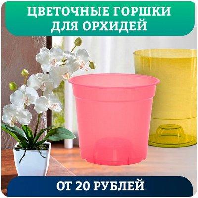 Быстро и выгодно! Всё для деликатного ухода за одеждой — Цветочные горшки для орхидей от 20 рублей