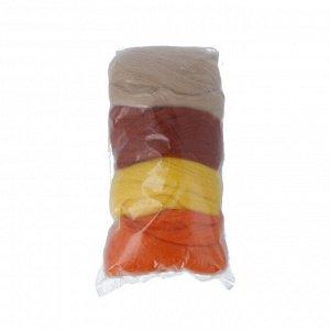 Набор шерсти для валяния цвет Ассорти №6