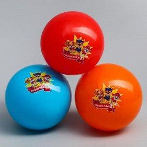 "Мяч детский Paw Patrol ""Команда"" 16 см."