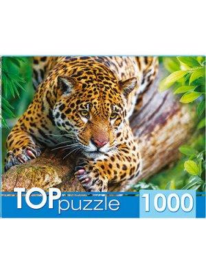 Пазлы 1000 Грациозный леопард на дереве