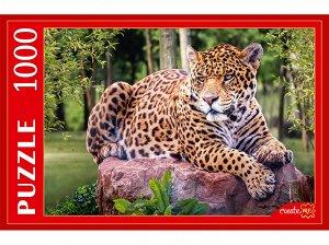 Пазлы 1000 Леопард на камне