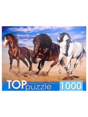 Пазлы 1000 Тройка диких лошадей