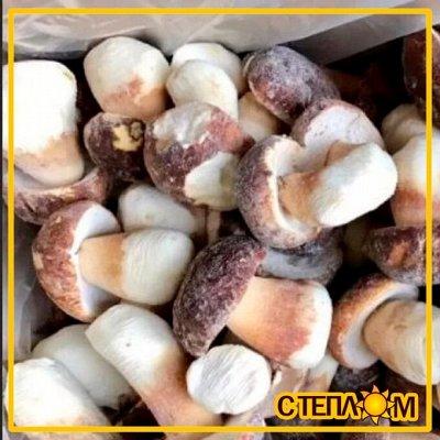Свежие Фермерские продукты со всего края ✔Быстрая доставка! — 🍃ГРИБЫ Белые (свеже-мороженные), Анучинский район — Ягоды и грибы