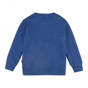 Свитшот ДМ Количество в упаковке: 1; Артикул: BN-174В21-461; Цвет: Синий; Ткань: Футер 2-х нитка; Состав: 100% Хлопок; Цвет: Синий | Синий Скачать таблицу размеров