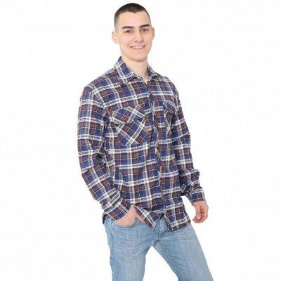 Cotton и Silk — фабрика домашнего текстиля для всей семьи — Мужское, Рубашки — Рубашки