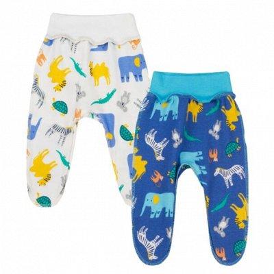 Y-Plus Для крох и дошколят — Ползунки, штанишки — Ползунки