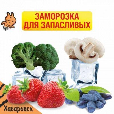 Отменяем поход за продуктами — Заморозка для запасливых — Фрукты