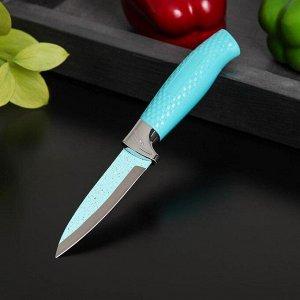 Нож Доляна Lazura, овощной, лезвие 8,5 см, цвет бирюзовый